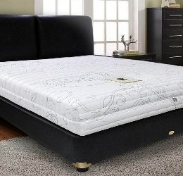 Jual Springbed Trendy Essential Latex Surabaya